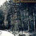CRUX DISSIMULATA Bleichmond.jpg